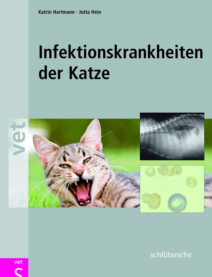 infektionskrankheiten-der-katze