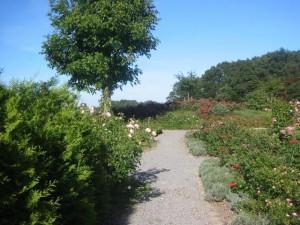 Foto: Kleintierkrematorium im Rosengarten