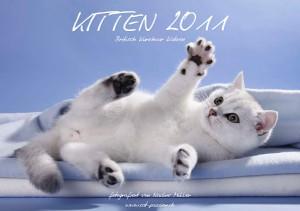 """Kalender """"Kitten 2011"""" - einer der sechs Kalender von Nadine Müller. Quelle: http://www.cat-passion.ch"""