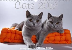 Cat Passion Kalender 2012. Foto: Nadine Müller